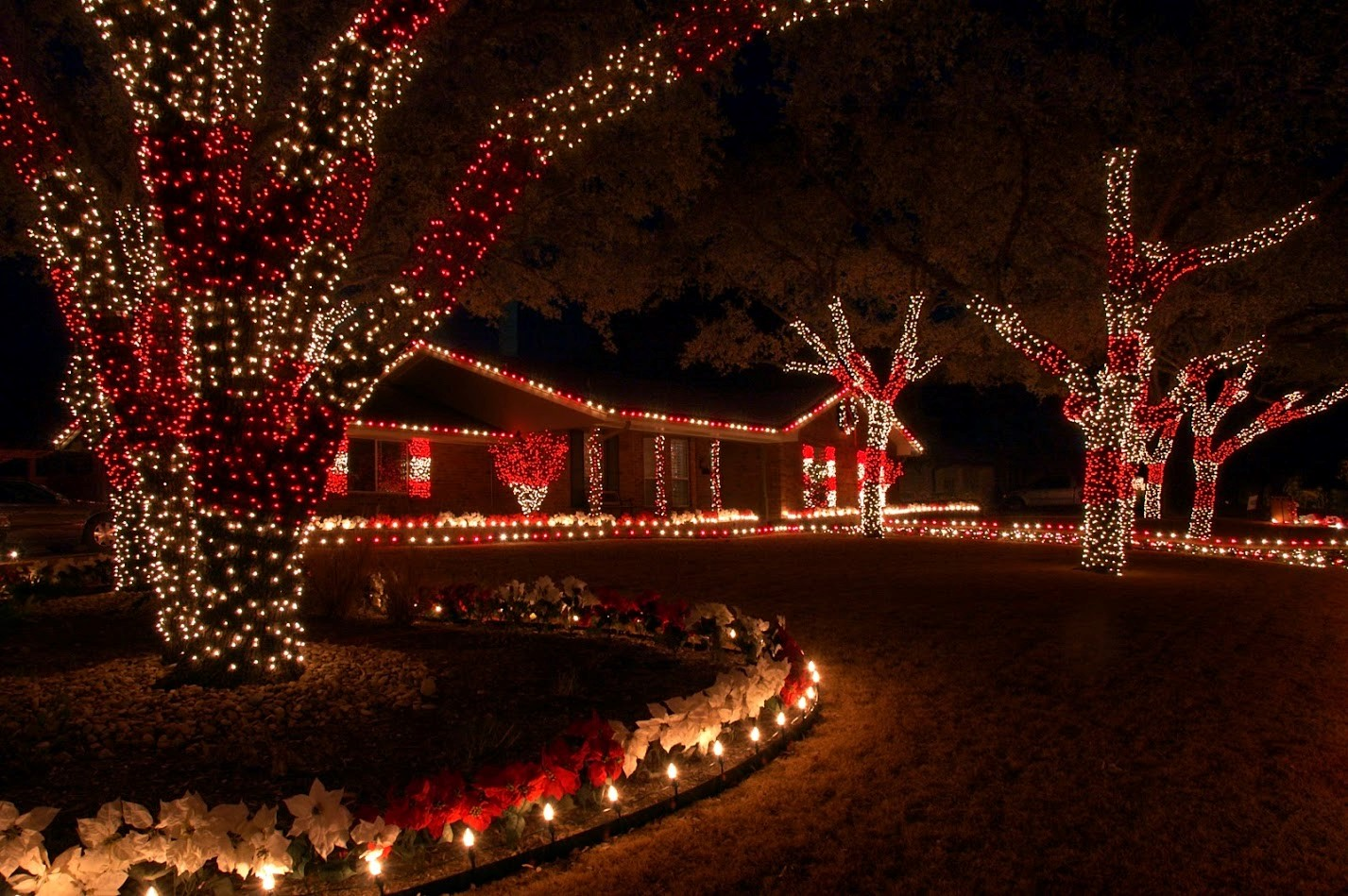 red and white christmas lights - HD 1300×954